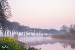 Sunrise at Ooijpolder (The Netherlands) (Renate van den Boom) Tags: 04april 2019 boom europa gelderland jaar landschap maand mist natuur nederland ooijpolder renatevandenboom water weer zon zonsopkomst