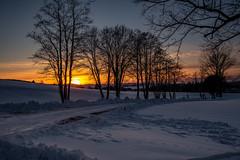 Sonnenuntergang (matthias_oberlausitz) Tags: sonnenuntergang oppach waldstrase schnee winter oberlausitz sachsen saxony