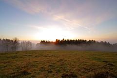 DSC01944 (MikeSolfrank) Tags: none herbst autumn nebel mist light lichtstimmung tree bäume berg wood forest bayern bavaria outside nature art sky winter