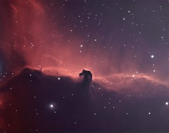 IC434 Horse Head Nebula Ha-OIII BiColor (Bright Sky Photography) Tags: narrowband ccd astro astrophotography atik314l space blue yellow green nebula deepspace ic434 horseheadnebula atik atikccd skywatcher equinox 80 astronomy sky