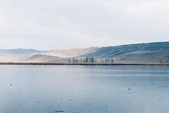 Lisi Lake (SaintPaula) Tags: lisi film kodak filmisnotdead photography photograph lake tbilisi georgia portra nikkon n80