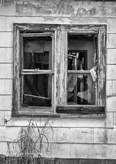 Abandoned and Neglected (Kool Cats Photography over 11 Million Views) Tags: abandoned blackandwhite bw highcontrast torn neglected windows oklahoma old outdoor abstract architecture artistic art abstractart yabbadabbadoo tones backcountry backroads