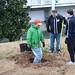 Ayrsley_Tree_Planting_2019_ (66)