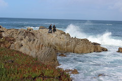 IMG_9795 (mudsharkalex) Tags: california pacificgrove pacificgroveca