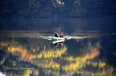 The fishers progress: Rydal Water. (trev.eales) Tags: rydal rydalwater lake lakedistrict boat fishermen fishing autumn autumncolour reflections landscape waterscape trees woodland woods water cumbria serene peaceful nikon treveales