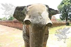 Angkor_Mebon Orientale_2014_19