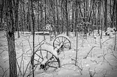 Wagon wheels in the snow (Bob Gundersen) Tags: bobgundersen gundersen robertgundersen guilford ct conn connecticut country connecticutscenes tree forest cold winter white snow snowy wheel outside outdoor exterior yard home frozen countryside flickr nikon nikoncamera nikond600 d600 camera photo ice icy scenes scene landscape day bw