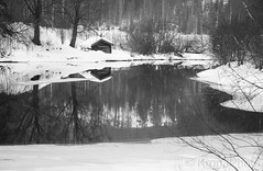 River reflection, Sigdal, Norway (KronaPhoto) Tags: 2019 natur vinter bnw bw cabin wooden reflection house river elv water calm mirror forest norway skog winter cold laft båthus tømmer sigdal old aged building snø snow