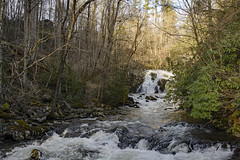 View From The Bridge - Old River Road (mevans4272) Tags: river waterfall nantahala carolina north forest trees house