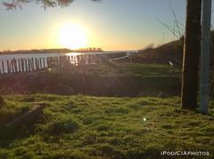 IMG_8563 (CIAphotos) Tags: ipod aberdeen wa usa pilings sunset dock chehalisriver