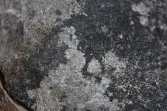 DSC_1024 (1) (jgdav) Tags: ancient quartz pigment rock macro image pictograph petroglyph america