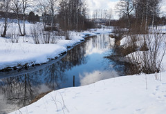 Ruisseau (sosivov) Tags: sweden snow spring winter white water river reflection mirror trees