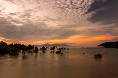 Sunset Serenity-5403 (islandfella) Tags: orpheus island research station national park jcu james cook university queensland australia evening sunset dusk twilight sea beach coastline mangroves trees nature travel water sky clouds