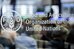 12173v0296 (FAO News) Tags: rome italy fao sheikhzayedcentre sideevent faocouncil161stsession