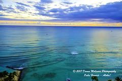 OAHU-HAWAII_1D52750-01 (Donna Molinari Photography) Tags: sanjose ca usa