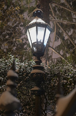 Snowy Lamp (jtgfoto) Tags: approved annapolis snow snowy nightscape nightlights dta downtownannapolis annearundelcounty maryland naptown sonyimages sonyalpha cityscape zeiss governmenthouse governorsmansion lamp light night