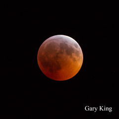 Moon eclipse (Gary/-King) Tags: 2019 brattleboro january vermont eclipse moon superbloodwolfmoon supermoon wolfmoon