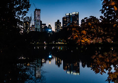 "Central Park by night (Maya K. Photography) Tags: centralpark manhattan newyork ny nyc newyorkcity reflection buildingcomplex buildings newyorkers newyorkphoto water landscape lake lights shadows nikon nikond5000 nikkor nikonphotography night nightphotography nightlights citynight autumn fall trees architecture usa us unitedstatesofamerica america flickr photo photography bluesky cityphotography cityscape citylights colorsofautumn centralparkautumn nycautumn buildingstructure buildingreflection mayakphotography mayak nature park skyscraper sky city skyline flickrelite ""nikonflickraward"""
