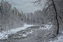 3280-1sm (torriejonvik) Tags: river snow rocks trees british columbia pacific northwest canada vancouver
