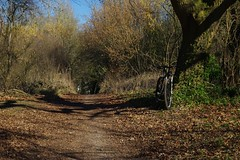Well if the weathers there, be rude not to! (favmark1) Tags: kent cycle chilham ncr18 trail spring february