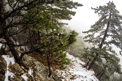 0018_GOPR4757 (marcellszmandray) Tags: ausztria hohewand gutensteinialpok alpok viaferrata kirándulás tavasz hó gebirgsvereinsteig