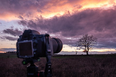 always bring a second camera (phlickrron) Tags: landscape tree camera nikon fujifilm clouds outdoors hiking gear sunset