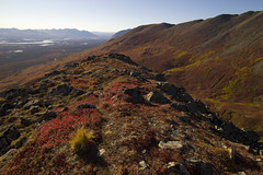 Clearwater mountains hike (JR-pharma) Tags: alaska usa united october northwest north west automne fall states america roadtrip road trip photoroadtrip hiking hike 2015 french français nature aventure liberty liberté canoneos6d canon6d mark 1 canon eos 6d classic jrpharma denalihighway denali highway