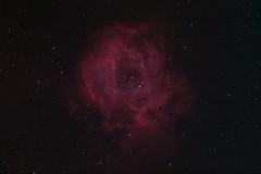 Rosette Nebula Ha Oiii (mikeb650) Tags: astrometrydotnet:id=nova3157691 astrometrydotnet:status=solved