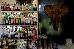 IMGP0413 Elephant Bar