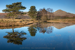 Trees and Reflections in Kelly Hall Tarn, Cumbria (john@johnrobertsimages.co.uk) Tags: england winter tarn lakedistrict coniston 3x2 fell outdoor vacation hill scenic beautiful cumbrian walking travel kellyhalltarn tourism britain upland lakes trekking season country mountain cumbria europe uk torverbackcommon attractive countryside elevation fells hiking mountainous mountains picturesque rural unitedkingdom gb
