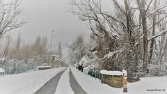 2019 04 (Ismael I) Tags: nieve pueblos puentedealba larobla leon castillayleon leoncunadelparlamentarismo invierno arboles nevada paisajenevado febrero carretera