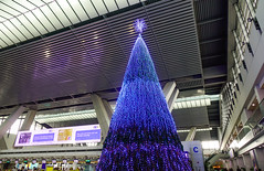 Illuminated Christmas tree in Manila Airport (phuong.sg@gmail.com) Tags: adventure air aircraft airline airport area aviation background celebration christmas colour decor decoration departure domestic economy fir firtree hall happy holiday indoor interior international journey light main modern newyear passenger terminal tourism transport transportation travel tree trip vacation winter xmas