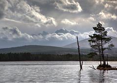 Loch Garten (Teuchter Prof) Tags: lochgarten lochs scottishlochs lochgartennaturereserve abernethy rspb clouds shadows storm pinetrees scottishhighlands scotland