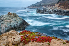 Down by the Sea (Kirk Lougheed) Tags: bigsur california carpobrotusedulis garrapata garrapatastatepark santaluciamountains usa unitedstates coast flower iceplant landscape ocean outdoor pacific pacificocean sea seascape shore shoreline water