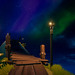 Sea of Thieves / Northern Nights