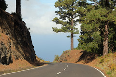 through pine forest down to Hoya Grande (EduardMarmet) Tags: lapalma spanien esp