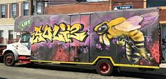 Stinger by Soly Dos (wiredforlego) Tags: graffiti mural streetart urbanart aerosolart publicart williamsburg brooklyn newyork nyc ny solydos