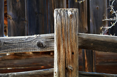 At the Ranch (studioferullo) Tags: architecture art beauty bright building colorful colourful colors colours contrast dark design detail edge light lines nopeople perspective pattern pretty southwest study sunlight sunshine street texture tone world sonoita arizona empireranch ranch fence friday wood timber barn