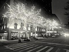 Seasonal lights on Broadway January 2019 (dannydalypix) Tags: manhattan newyorkcity broadway broadwaynewyork blackandwhite