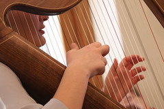 2 of Harps 1648 (Tony Withers photography) Tags: musicians harpists duo adel karina wilson music