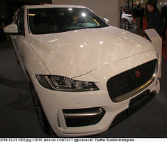 2018-12-21 1303 Taipei Motor Show - Jaguar group (Badger 23 / jezevec) Tags: jaguar 2019 20181221 taipei motor show jezevec new current make model year manufacturer dealers forsale industry automotive automaker car 汽车 汽車 auto automobile voiture αυτοκίνητο 車 차 carro автомобиль coche otomobil automòbil automobilių cars motorvehicle automóvel 自動車 سيارة automašīna אויטאמאביל automóvil 자동차 samochód automóveis bilmärke தானுந்து bifreið ავტომობილი automobili awto giceh 2010s shownew carcar review specs photo image picture shoppers shopping taiwan