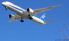 JA886A All Nippon Airways Boeing 787-9 Dream)Liner@YVR 02Mar19 (Spotter Brandon) Tags: yvr cyvr vancouver ja886a ana allnippon allnipponairways boeing 787 7879 dreamliner