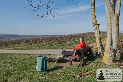 Rast über Schwabenheim