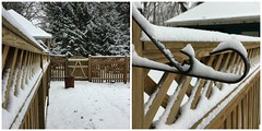snowy fence diptych (karma (Karen)) Tags: baltimore maryland home backyard snow fences hff
