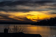 Lake Washington Sunset 3/15/19 (BobbyFerkovich) Tags: bristolsunsetrentonwashingtonlakewashington water clouds night sonyalphaa7riii lexar memory sonyimages sony 2470 g