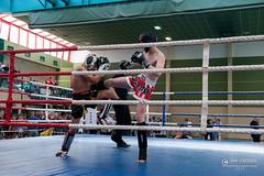 """foto adam zyworonek fotografia lubuskie iłowa-6197 • <a style=""""font-size:0.8em;"""" href=""""http://www.flickr.com/photos/146179823@N02/40539407473/"""" target=""""_blank"""">View on Flickr</a>"""