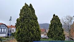 Cielos cubiertos (eitb.eus) Tags: eitbcom 30487 g1 tiemponaturaleza tiempon2019 paisajes bizkaia portugalete juantxuaberasturi
