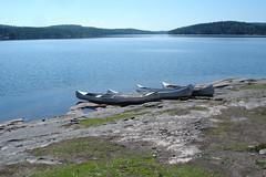 DSC05238 (MSchmitze87) Tags: schweden sweden dalsland kanu canoeing see lake