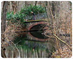 In a reflective mood (nickyt739) Tags: berlin city park germany deutschland europe capital rural urban bridge trees leaves reflection reflective nikon dslr d750 fx travel explore contemplate contemplation think thought provocative tiergarten green colours bright colourful
