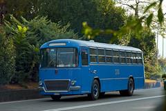 FIAT 306 - A.I.T.E. (marvin 345) Tags: fiat306 corriera bus pullman coach verbania marvin345 fiat fiatcorrierecorrierabus